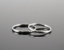 Anello Acciaio 2 mm